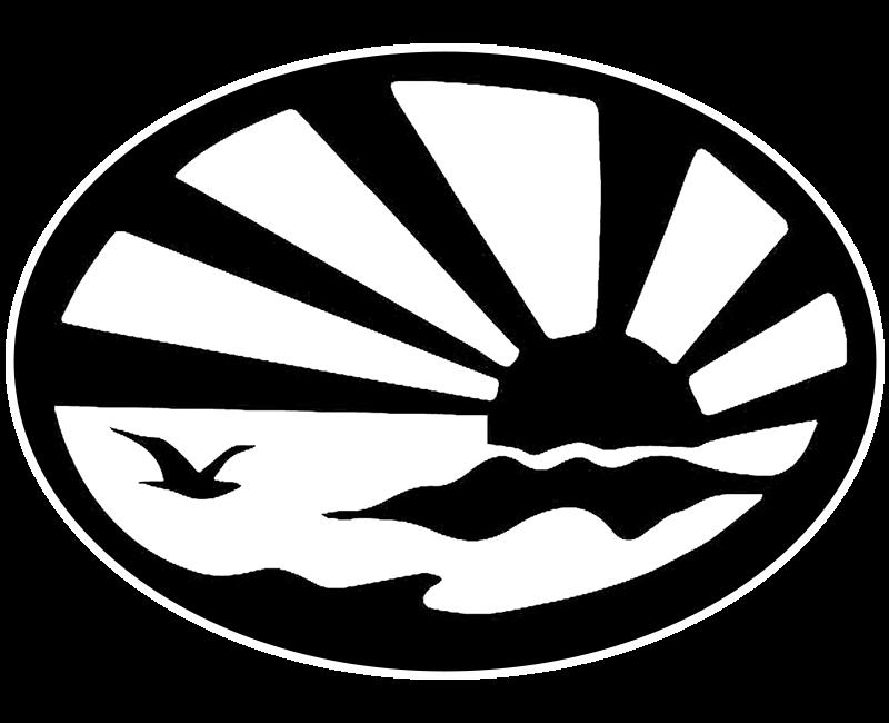 ECI Logo Icon Black